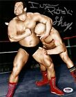 Ivan Putski & Iron Sheik Signed 8x10 Photo PSA/DNA COA Auto'd WWE WWF Picture 1