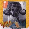 Mull Historical Society - Loss [ECD] (2001)  CD  SPEEDYPOST