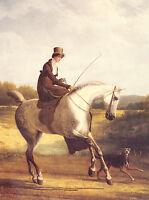 LADY RIDING SIDE SADDLE ON A GREY HUNTER HORSE DOG PRINT -  SALE & Post Free