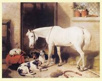 FOXHOUND HUNTER HORSE HACK KENNELS DOG FINE ART PRINT - (Large) SALE & FREE POST