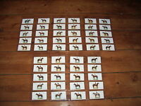 DERBY AND GRAND NATIONAL WINNERS PLAYER'S CIGARETTE CARDS SET OF 50 ORIGINAL