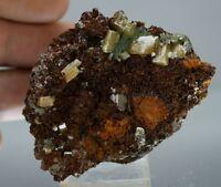 WULFENITE and MIMETITE nice crystals on matrix MEXICO - OJUELA MINE (#191)