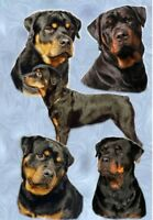 Rottweiler A6 Blank Card Design No 1 By Starprint