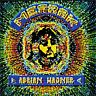 Merak/Adrian Wagner New CD