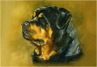 Rottweiler A6 Blank Card Design No 6 By Starprint