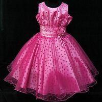 Hot Pinks Christmas Wedding Flowers Girls Pageant Dresses SIZE 2-3-4-5-6-7-8-10T