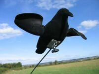 AIR PRO CROW SPINNING WING DECOY FLYING shooting magnet