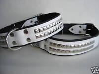 Halsband - Hundehalsband, Halsumfang 48-59cm/40mm, LEDER&Neu, WEISS (PL.25-6-5-7