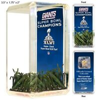 New York Giants Super Bowl XLVI Game Used Turf Desktop Collectible