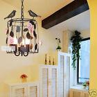 Rose Rural Style Black D28CM H40CM 3 Lights Iron/Glass Birdcage Candle Droplight