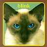 blink-182, Cheshire Cat, Excellent