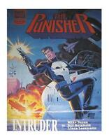 Marvel Graphic Novel: The Punisher: Intruder Hardcover (1989, Marvel)