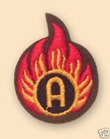 NEW Colour Ammunition Technician badge ( AMMO TECH