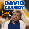 CD David Cassidy Live In Concert