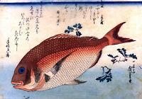 Japanese Woodblock Print by Ando Hiroshige