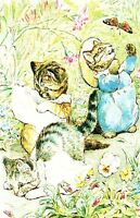 (08886) Postcard - Tale of Tom Kitten - Beatrix Potter - unposted