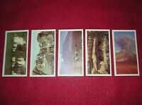 Rare 1984 Brooke Bond Tea 5 Features of the World Trading Cards 6, 7, 8, 9, 11