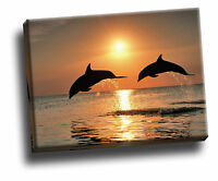 Bottlenose Dolphins Jumping at Sunset Giclee Canvas Wildlife Picture Wall Art