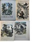 Kipling Le Livre de la Jungle Illustré par Gandon Ex sur JAPON imperial suite
