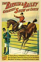 Barnum & Bailey Classic Equestrian Circus Poster 16x24