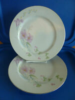 Studio Nova Pink Vista  2 Dinner Plates     Discontinued