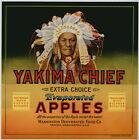 YAKIMA CHIEF Vintage Washington Apple Crate Label, Indian, **AN ORIGINAL LABEL**