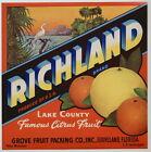 RICHLAND Vintage Groveland Florida Citrus Crate Label, ***AN ORIGINAL LABEL***