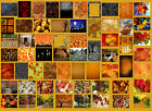 NEW Halloween Fall Digital Backdrops Backgrounds TOP PRO Quality Green Screen
