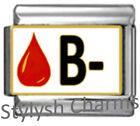 BLOOD GROUP TYPE B- Enamel Italian Charm 9mm Link- 1x MA010 Single Bracelet Link