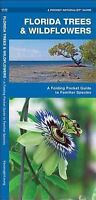 Florida Trees & Wildflowers: A Folding Pocket Guide to Familiar Species (Paperba