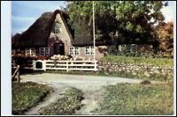 SYLT Schleswig Holstein AK Strasse mit Friesenhaus ungelaufene Postkarte