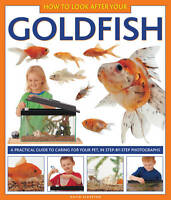 How to Look After Your Goldfish : A Practical Guide To Caring For Your Pet, In S