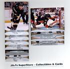 2011 12 Upper Deck Anaheim Ducks Veteran Team Set- 10 Cards *WE COMBINE S/H*