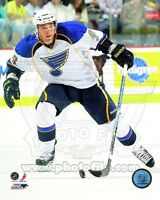 Matt D'Agostini St. Louis Blues NHL Action Photo 8x10 #2 - Combined Shipping