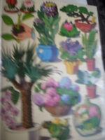 Große Buch der Zimmerplanzen u Balkonpflanzen HC Gärtne