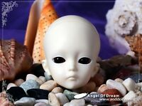 AOD 1/6 BJD Dollfie Boy Doll Parts Single Head ~Ling