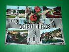 Cartolina Saluti da Montecatini Terme e Collodi - Vedute diverse 1961