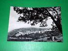 Cartolina Pescopagano ( Potenza ) - Panorama 1963