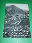 Cartolina Vinadio - Valle Stura ( Cuneo ) - Panorama 1964