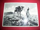 Cartolina colonie Libia - Indigeno in meditazione 1940