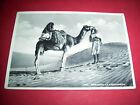 Cartolina colonie Libia - Indigeno nel deserto 1940 ca