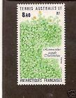 TAAF FRENCH ANTARCTIC 1990 RANUNCULUS PLANT 1v  MNH