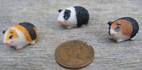 1:12 Scale Dolls House Miniature Single Resin Guinea Pig Garden Accessory Type B