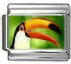TOUCAN TROPICAL BIRD Photo Italian Charm 9mm Link -1x BI004 Single Bracelet Link