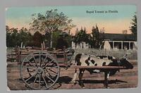 1913 Color RPPC Postcard Cover Black Americana Rapid Transit in Florida ox cart