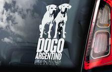 Dogo Argentino on Board - Car Window Sticker - Argentine Mastiff Sign Decal -V04