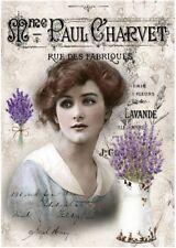 BÜGELBILD-Vintage-Shabby-Nostalgie-Vintage-Woman-Lavendel-3344