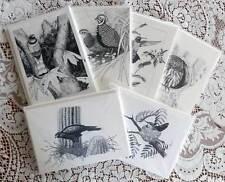 Moore-Craig Original Art Blank Note Cards Quail Hummingbird Owl West Wildlife