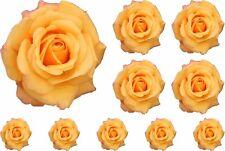 Flor rosa pintado Amarillo Vivero de Gráficos Pegatinas Arte Pared Decoración de ventana