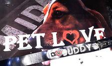 HUNDEHALSBAND LEDER Lederhalsband Buchstaben Zahlen Symbol Halsband Hund schwarz